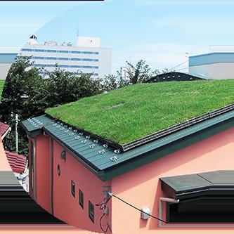 木造屋根の屋根緑化